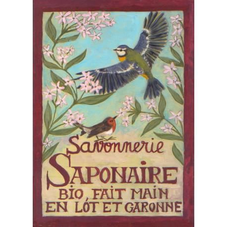 Carte postale Savonnerie Saponaire